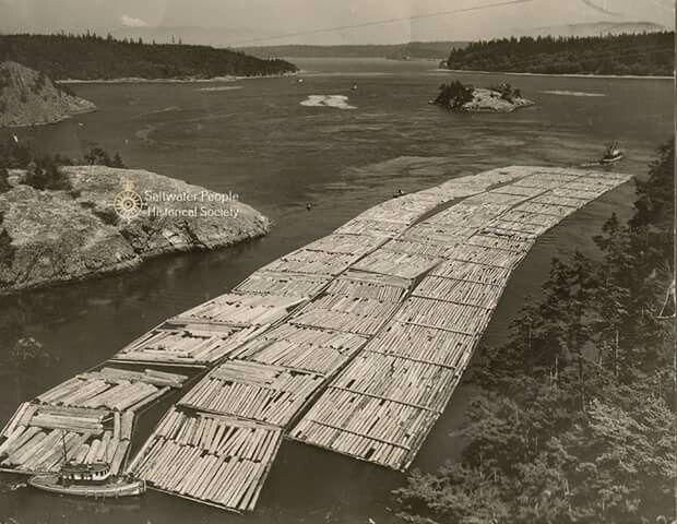 Az M/V BARBARA FOSS vontató és két kistesója a Fraser-folyóról hozott szálfa-tutajocskát terelgetik a Victoria-sziget partjainál. (Brit Columbia - Kanada,1941 nyara)