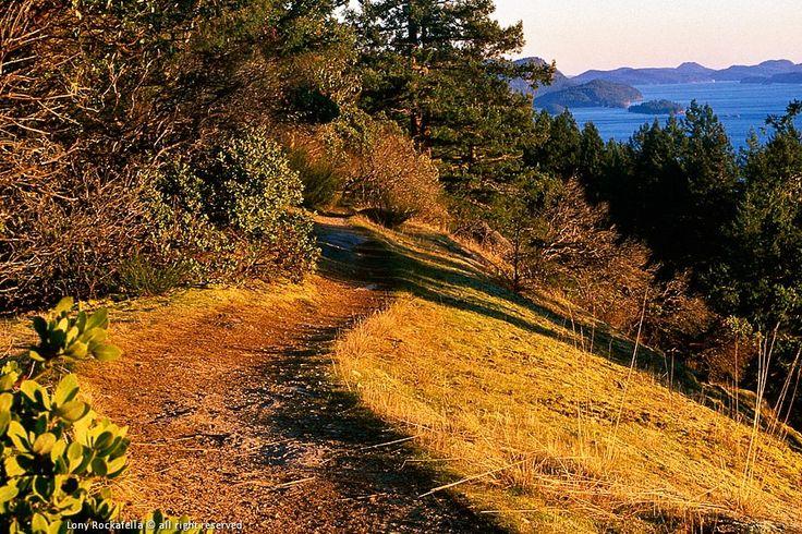 Bodega Ridge Hike | Galiano Island Chamber of Commerce