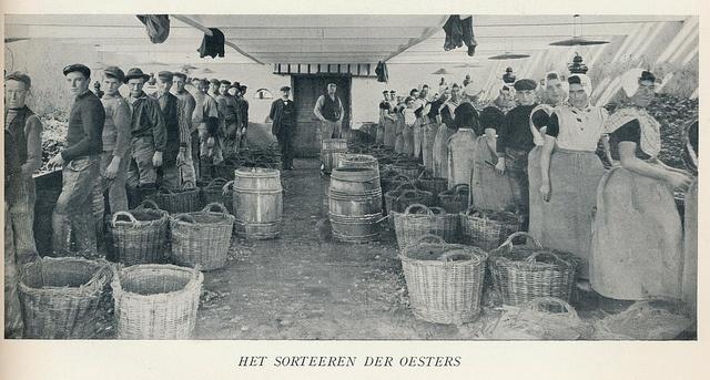 Ierseke Oesters sorteren 1900-1920 by janwillemsen, via Flickr
