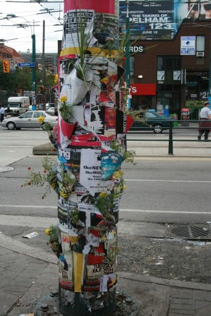 How to Recycle: Recycled Guerilla Gardening