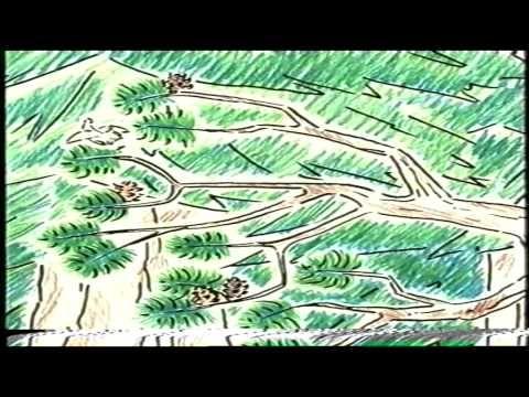 Noita Häjyhyytelö (video 28:45).