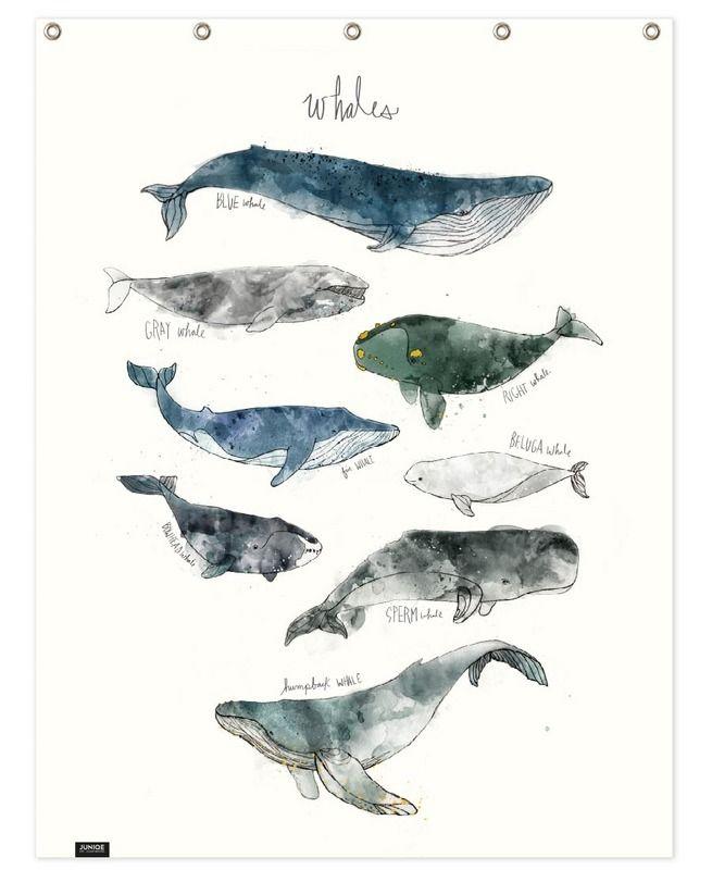 Whales - Amy Hamilton - Rideau de douche