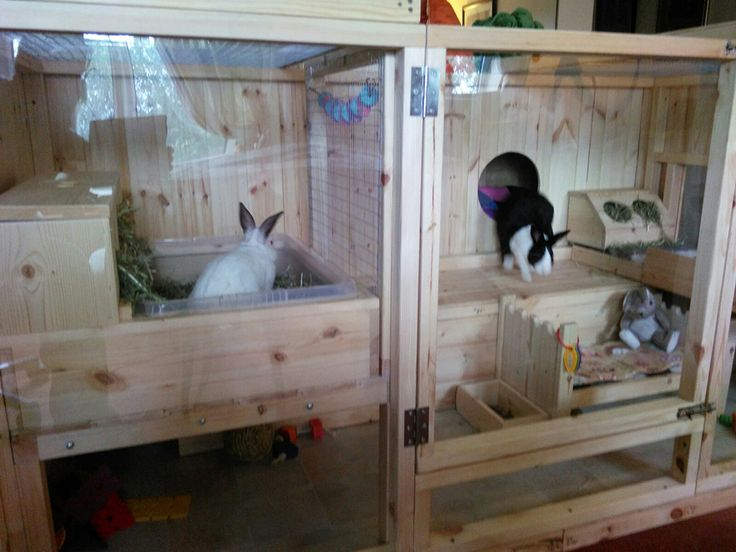 Gorgeous Indoor Home For Bunnies Page 3 Rabbits United