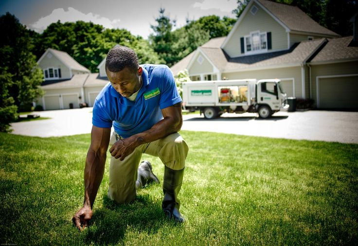 Savalawn expert lawn care service for your property