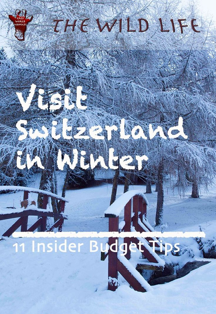 With my insider tips you will be able to spend an affordable holiday in the Swiss Alps. Visit Switzerland in the winter and enjoy the highest mountain peaks of Europe on a budget. Learn where to stay best in Switzerland and what to do in winter for skiers and non skiers, families, couples and single travelers. #VisitSwitzerland #myswitzerland #switzerland #SwissAlps #holidaysinswitzerland