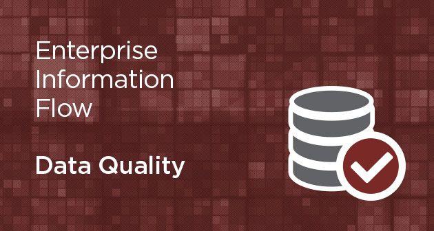 Enterprise Information Flow - Data Quality