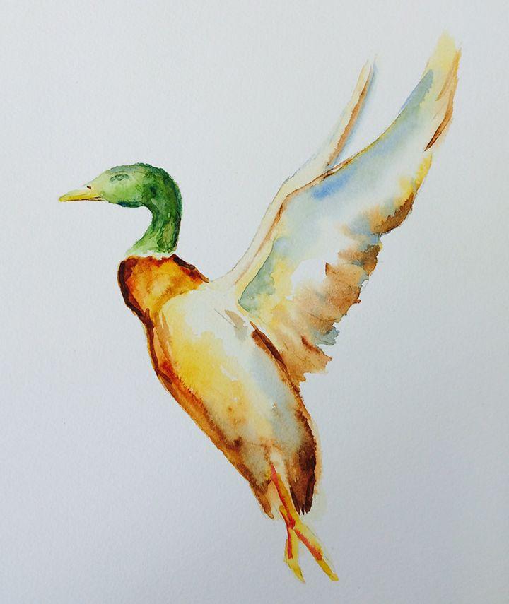 Envol du canard, aquarelle par Annie Collette