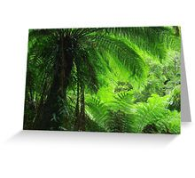 Rainforest: Greeting Cards & Postcards | Redbubble
