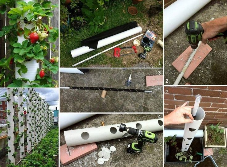 DIY Strawberry Tube Planter.  I have strawberries in pots, but I think I'm going to do this this year!  Love it!