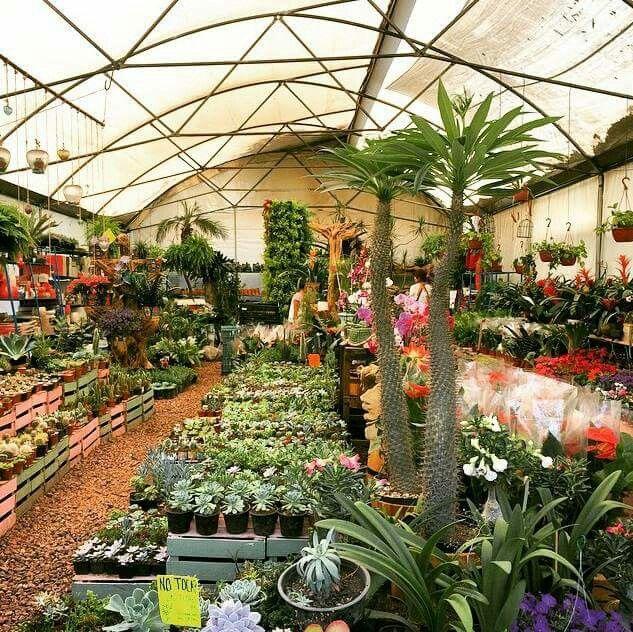 Xochimilco m xico pinterest gardens House of flowers alexandria la