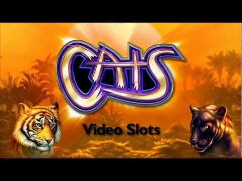 ▶ Cats Slots - A Frenzy of Fun with IGT's Cats Video Slots - YouTube