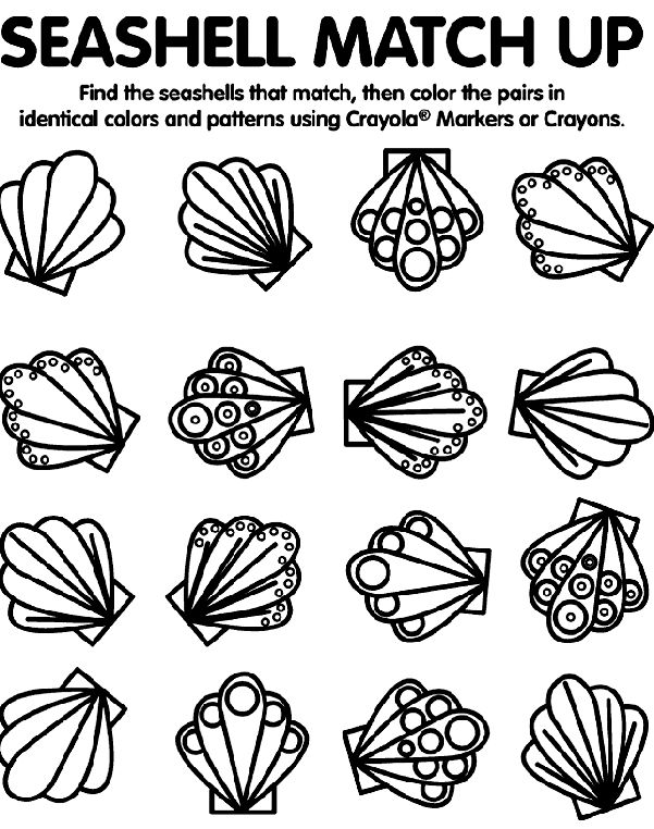 seashell matching coloring page - Seashell Coloring Pages Printable