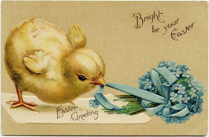 easter postcards easter greetings ether easter chick vintage easter ...