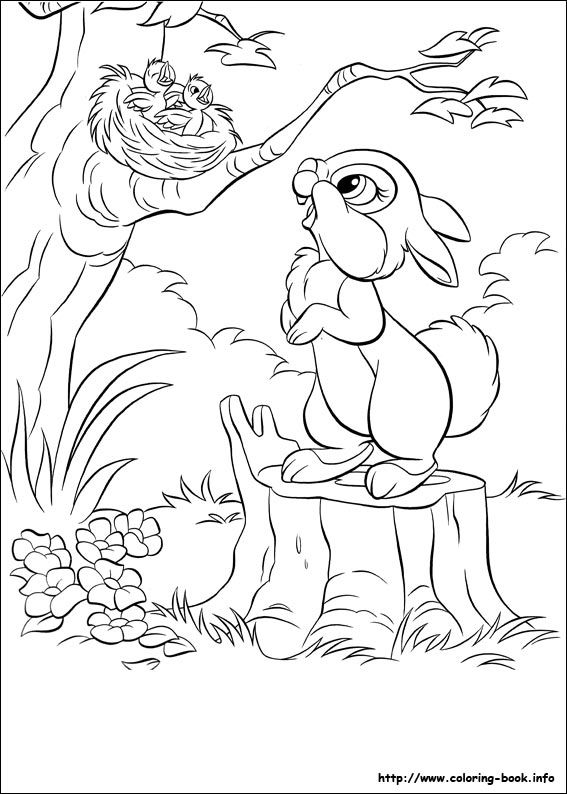 173 best BAMBI images on Pinterest  Adult coloring Drawings and