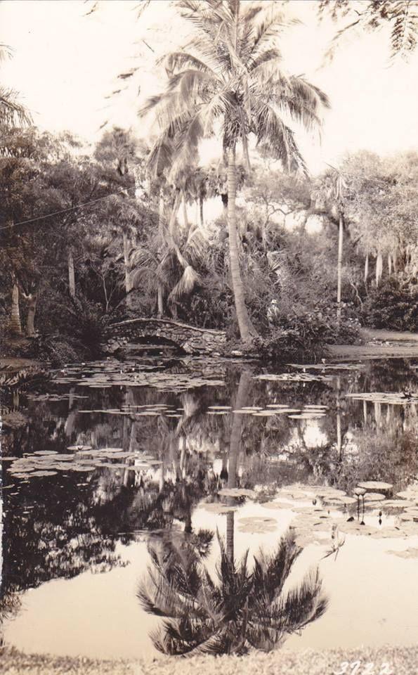 Mckee Jungle Gardens Vero Beach Fl Vero Beach Florida Pinterest