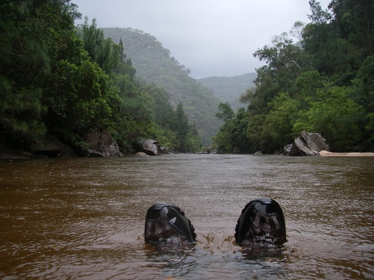 Would be awesome to paddle this one day. Colo River, NSW