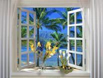 Когда идешь по улице, видишь красивые пластиковые окна. Невольно думаєш, какие цветущие растения могли бы украсить пластиковые окна. Цветы в окнах домов, прекрасный пейзаж. Смотришь и вроде бы чувствуешь их запах цветов в жилище зимой и летом , это так здорово!