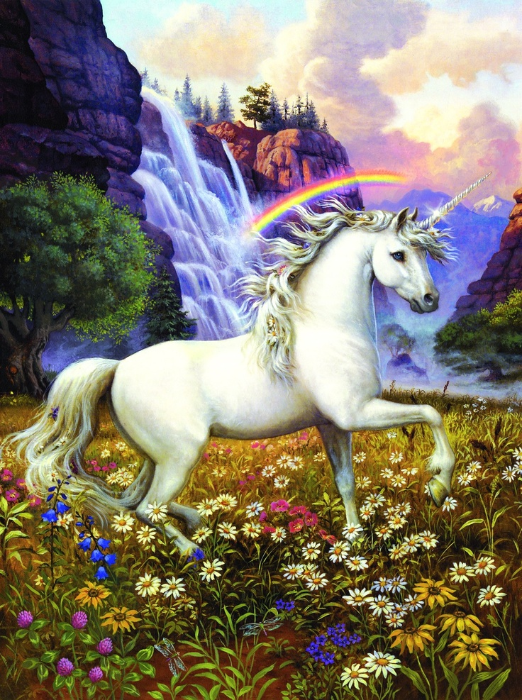 pretty | Pegasus and Horses | Unicorn photos, Unicorn art ...