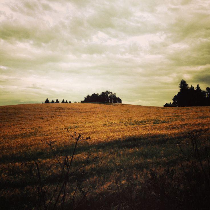 ❛hello september!❜ Høst på Havstein