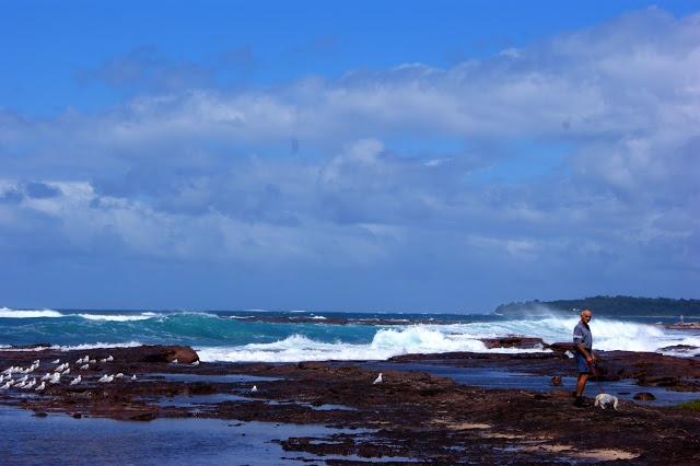 Shellharbour Australia.