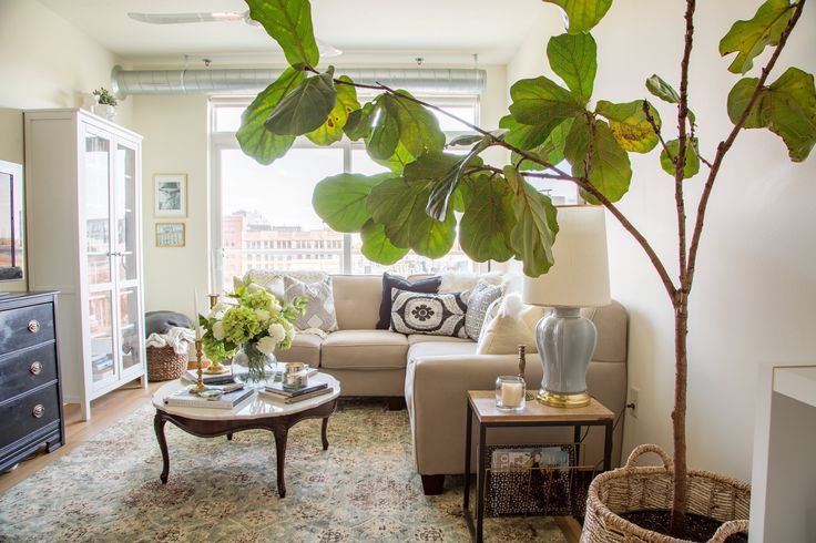 Welcome to Colie and her husband's cozy Minneapolis home.
