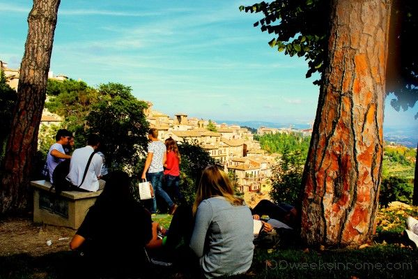 Students hanging out on a lawn in Perugia.