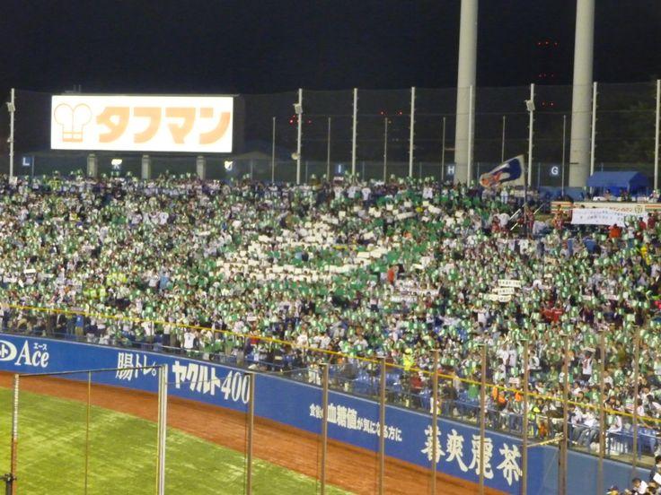 Tokyo Yakult Swallows - Jingu Stadium - 2013/10/4