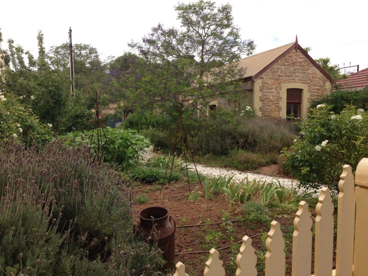 Kitchen garden in Angaston, South Australia
