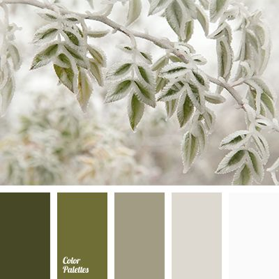 beige, dark olive, grey brown, hoarfrost color, olive, shades of beige, shades of brown, shades of green, soft beige shades, White Color Palettes, winter in the city color, winter shades.
