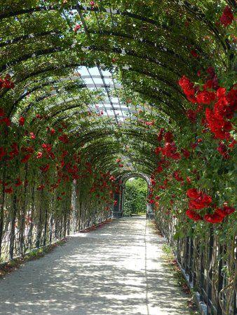 schonbrunn palace gardens vienne autriche
