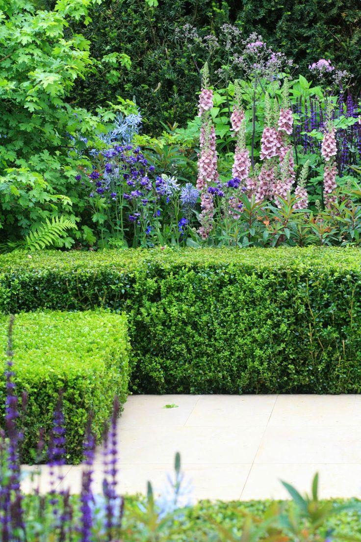 17 meilleures images propos de plantation geometrique for Louis jardin wine