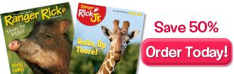nwf..kids..ranger rick online activities  GREAT