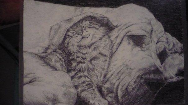 Cane e gatto.  Matita  Tempo: 1 ora e mezza