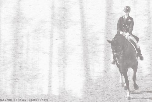 Dressage Rider .gif