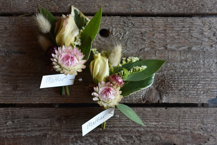 Buttonholes, Boutonnieres, summer flowers, January, strawflower, Lisianthus, Summer Wedding, Bunny Tails, grasses, Blackberries, variegated Ivy