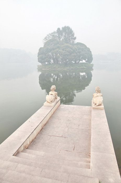 Mystic: Spaces, Inspiration, Favorite Places, Tree, Dream, Beautiful, Lake, Photography