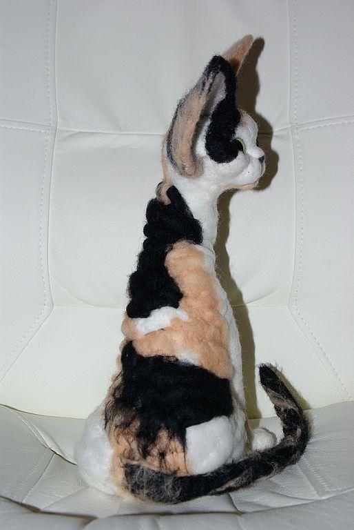 Кошка порода девон рекс