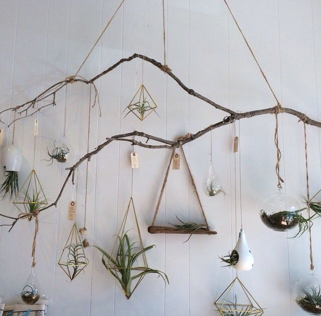 Best ideas about tree branch decor on pinterest