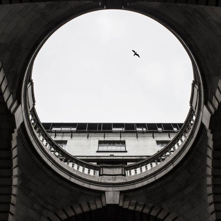 London poetry #london #buildings  @inlenso #photo #theculturetrip #architecture #art  #urban_greatshots  #blackandwhite #allblackcommunity #loves_structures #blackandwhite #archilovers #abstract  #ig_ometry #archi_features  #vsco #fineart #fineartphotography  #bird #monochrom  #jj_geometry #architecture_greatshots #geometry #thecity_life #loves_structures #blackandwhitephotography #lookingup_architecture #buildings #urban #unlimitedcities #timeoutlondon #jj_forum_1532