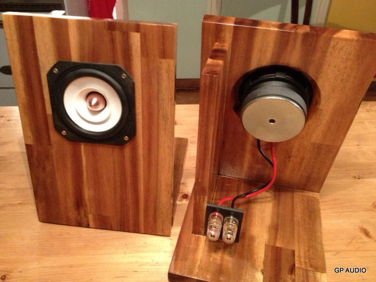 Desktop open baffle speaker.  You can get these drivers off of eBay and are said to sound good.
