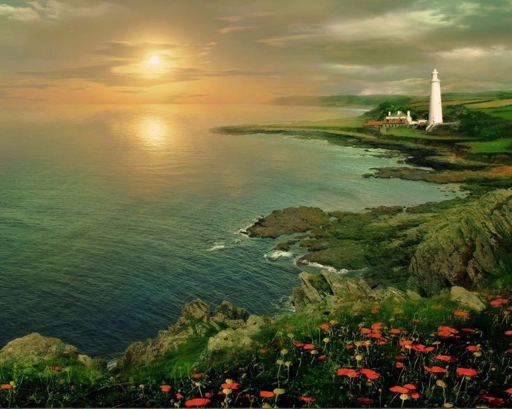 1280x1024 Обои маяк, закат, море, побережье, высота, маки, цветы