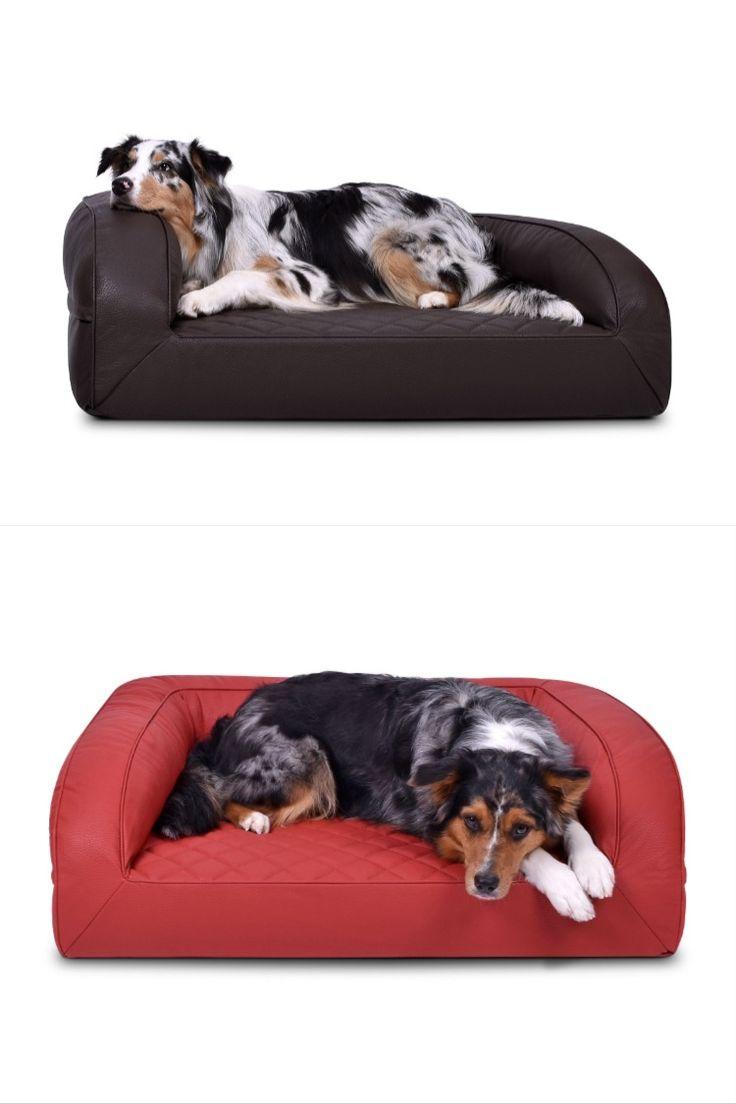 Orthopadisches Hundebett Aus Gestepptem Kunstleder In Vielen Grossen Und Farben Bei In 2020 Orthopadisches Hundebett Hunde Bett Hundebett