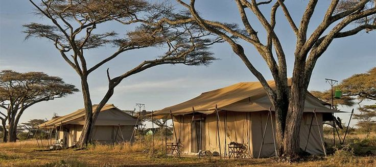 Deep within the northern Serengeti's prime wildlife area, Mara Under Canvas offers perfect luxury from which to witness the Great Migration and to explore the more remote corners of Tanzania's oldest and most famous National Park.