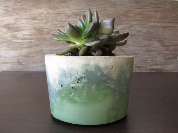 ➳ B A D S E E D ➳  Shades of blue colored concrete planter for beautiful indoor or outdoor display of succulents and cacti. Color added with concrete