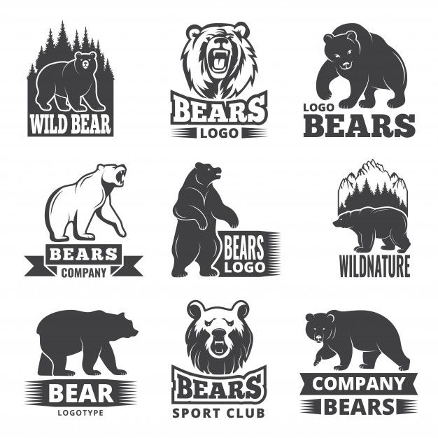 Sport Labels With Illustrations Of Animals Pictures Of Bears For Logo Design Bear Logo Design Bear Illustration Animal Logo
