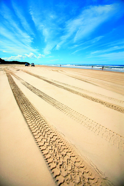 Cooloola beach - the best 4WD and camping spot in the world, complete with billabongs