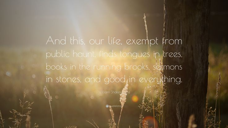 """William Shakespeare Quote: """"And this, our life, exempt from public haunt, finds tongues in trees, books in the running brooks, sermons in stones, and good in everything."""""""