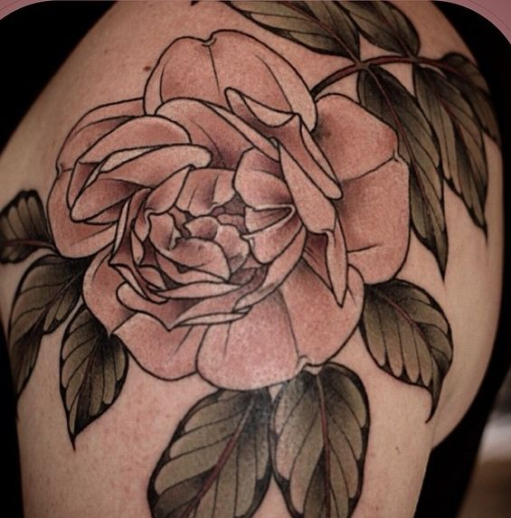 vintage rose tattoo by Alice Kendall - Design of TattoosDesign of ...