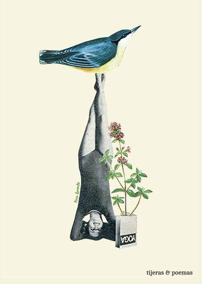 Collage Yogui by Tijeras y Poemas (Ana Lorente).  #collage #tijerasypoemas