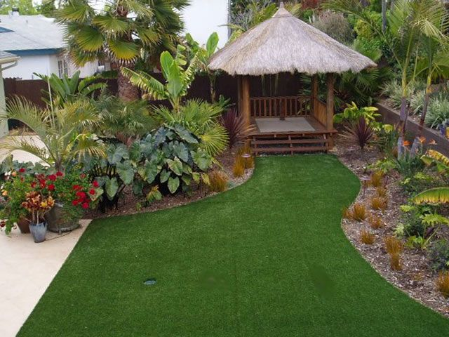 I love the tropical plants in this yard some palm trees for Backyard landscaping plants